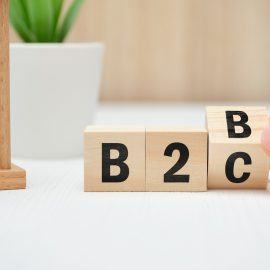 pivot from b2b to b2c